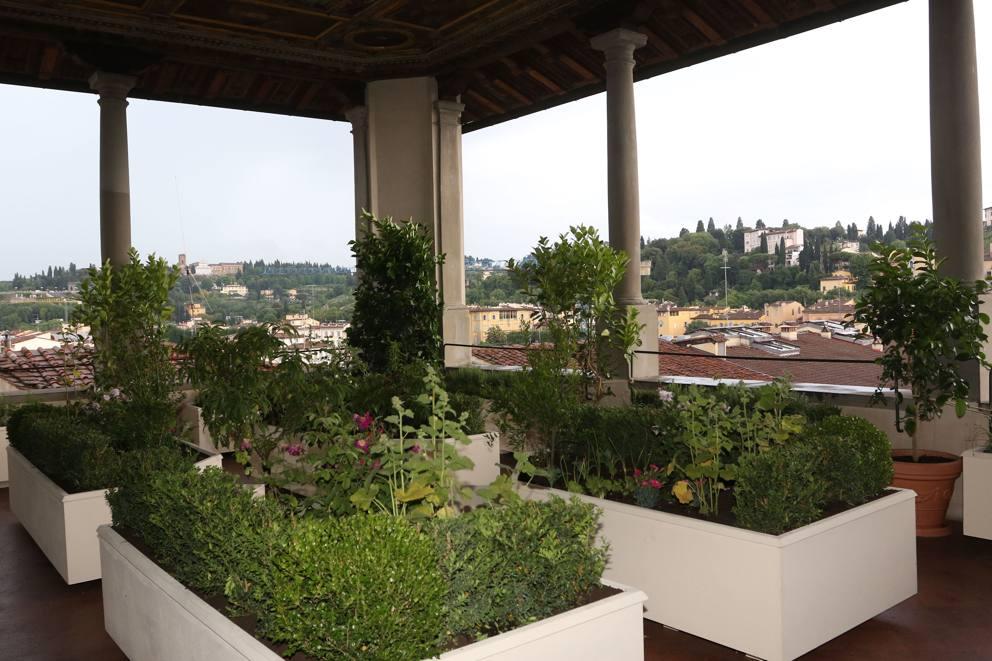 Firenze, a Palazzo Vecchio fiorisce il giardino pensile in terrazza ...