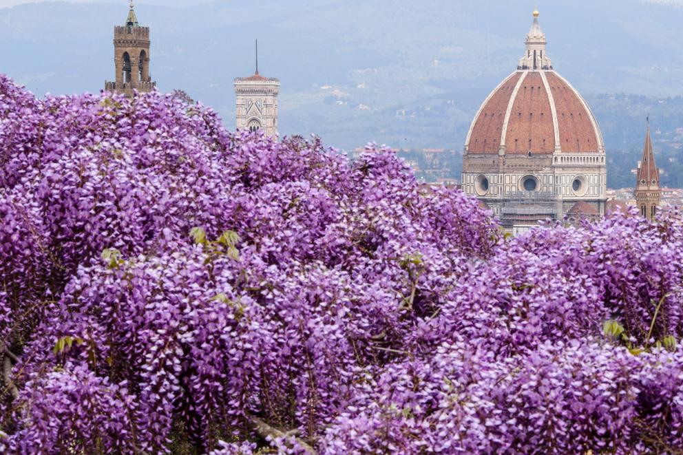 Villa I Glicini Firenze